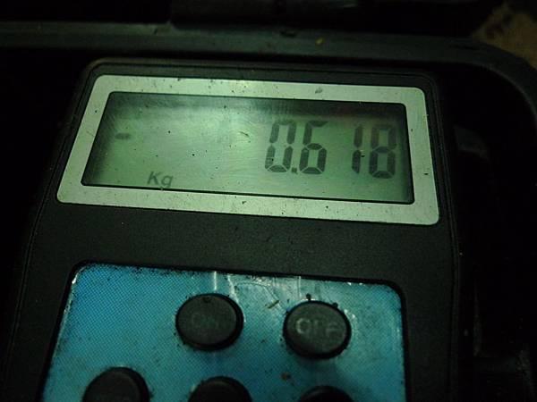 P1350321.JPG