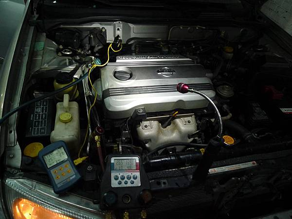 P1360083.JPG