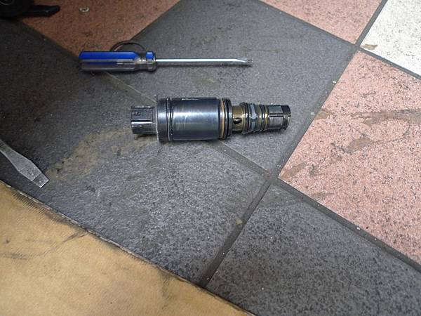 P1380296.JPG