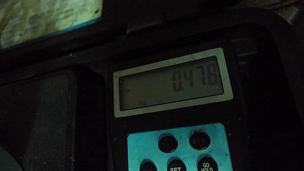 P1380754.JPG