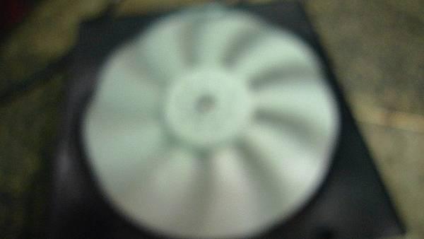 P1420060.JPG