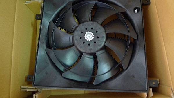 P1420093.JPG