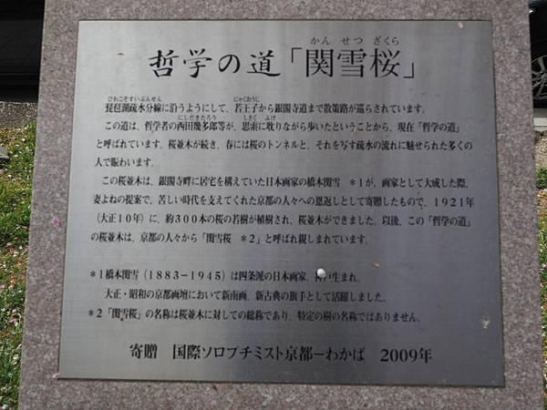 P1010958.JPG
