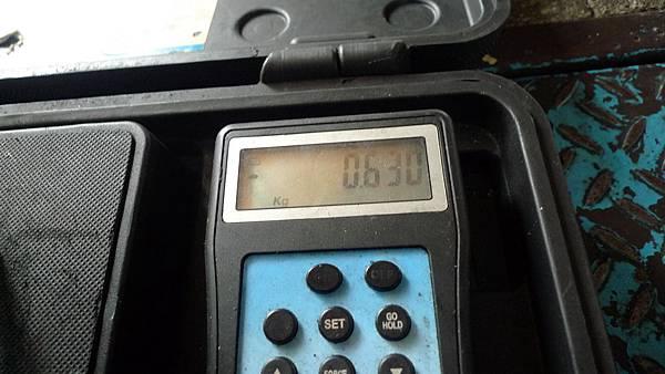 P1470653.JPG