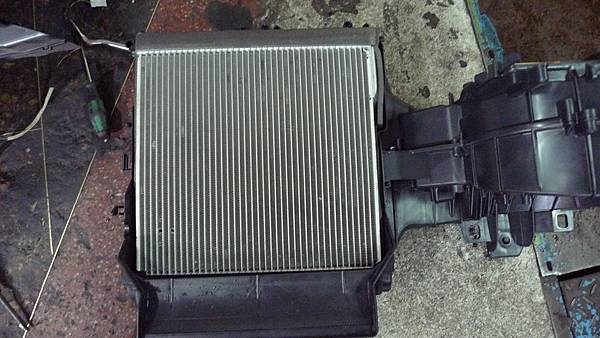 P1530355.JPG