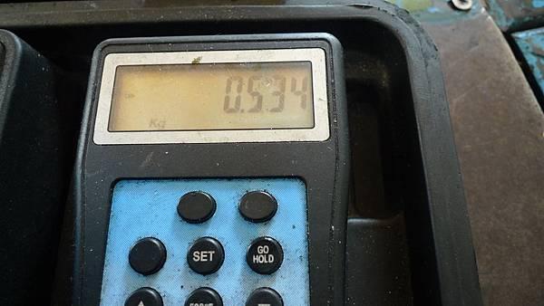 P1540345.JPG