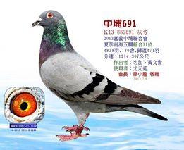2013-889691     中埔綜合11.jpg
