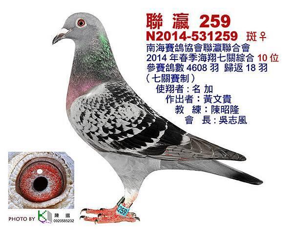 聯瀛2014-531259