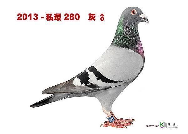 名加M1-25-2013-私環280 灰公