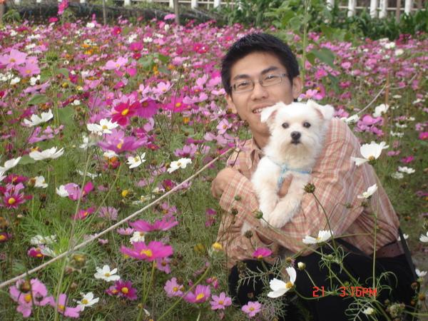 CW&DOG.jpg