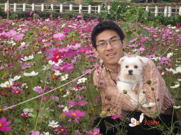 CW&DOG2.jpg