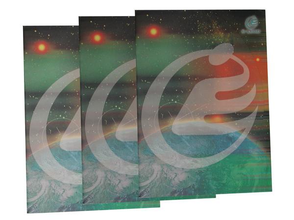 DSCN2539 copy.jpg