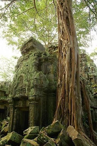 柬埔寨3_縮圖.jpg