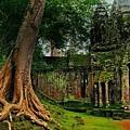 柬埔寨5_縮圖.jpg