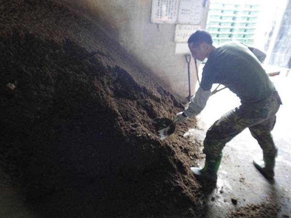 堆肥 (1)