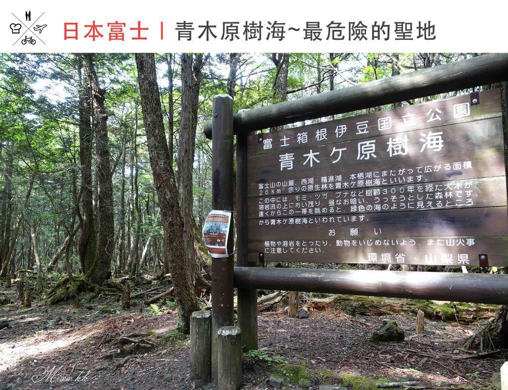 青木原樹海.jpg