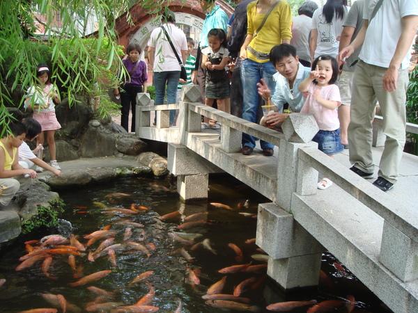 台南赤崁樓內的池塘