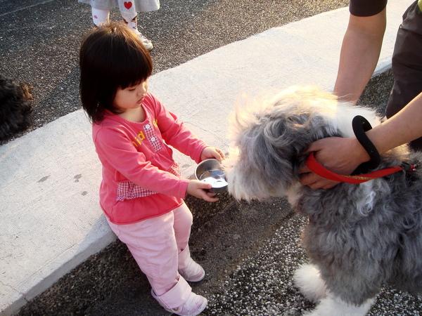 內湖美堤河濱公園-餵狗狗喝水