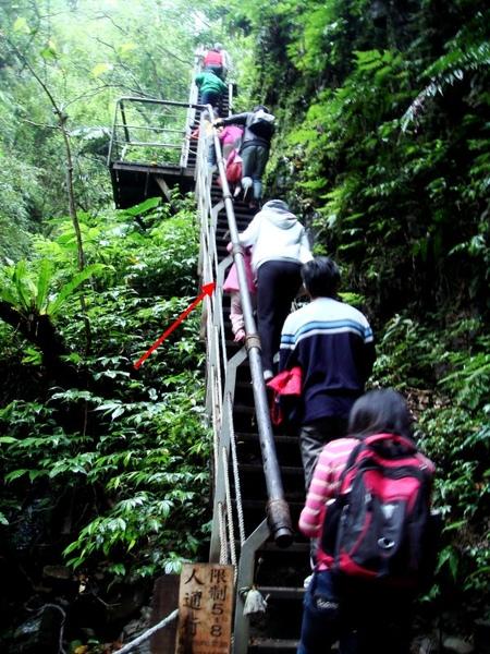 這是林美石磐步道內一個很陡峭的樓梯,紅箭頭處)是媽媽吃力地扶我爬樓梯