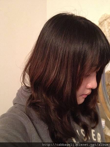 2012-12-01 01.32.10.jpg