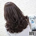 batch_20496097_1597060486978837_534861120_n (1)-07.jpg