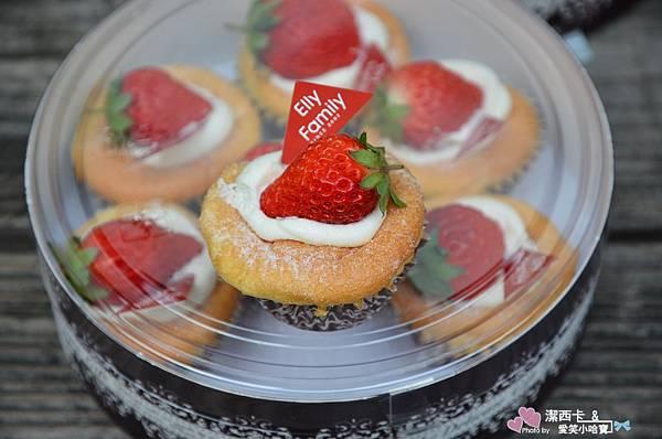 艾立蛋糕 (13)