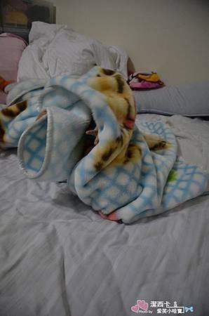 日本TOKYO西川 斷熱纖維發熱毯 (62).jpg