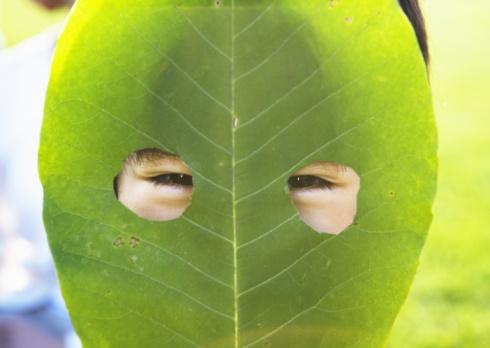 leaf mask.jpg