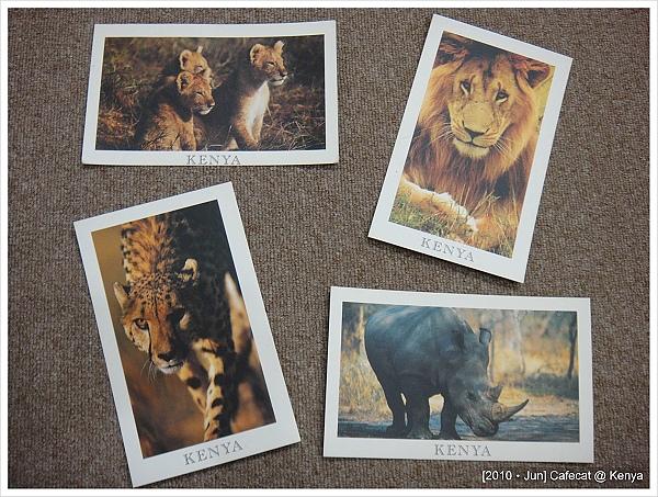 我的戰利品~Westgate買的明信片