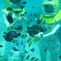 雖然整個海底漫步就是一直站在原地餵魚