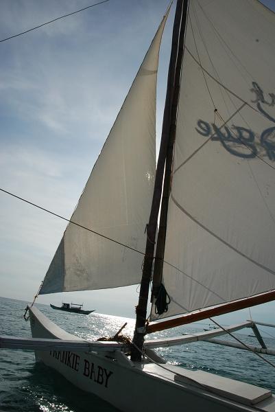 今天行程完全跟昨天一樣~搭風帆出海去