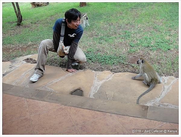 猴子真的很兇!!!