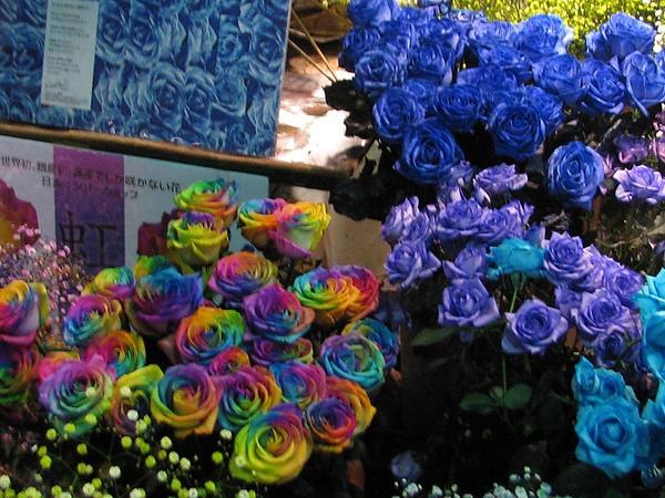 花店五彩繽紛的花