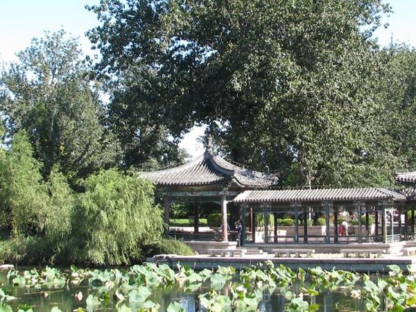 11396344:水木清華-北京(五)