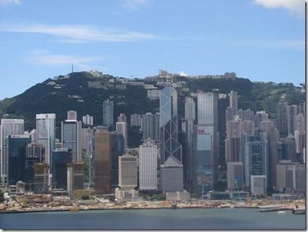 12057806:香港-八重菊