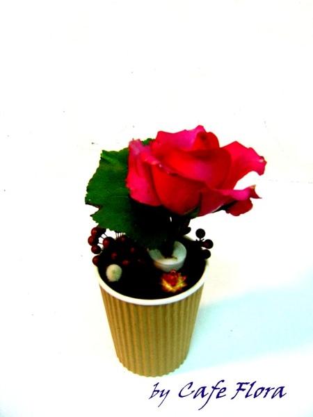 胭脂玫瑰.jpg