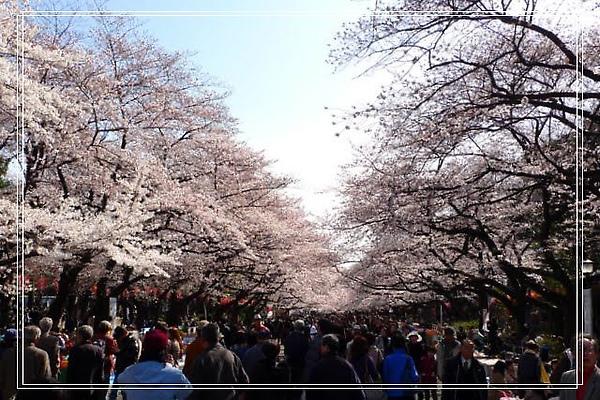 03.30 上野恩賜公園