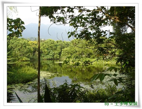 池塘0.jpg