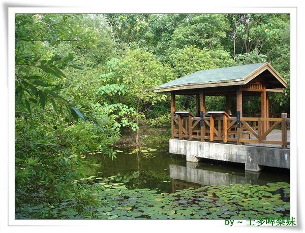 池塘1.jpg