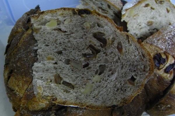 麵包組織.JPG