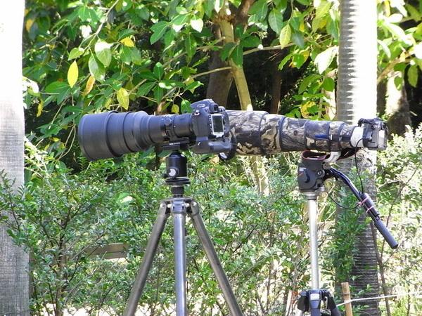 971129人家拍鳥用的大砲鏡頭.JPG