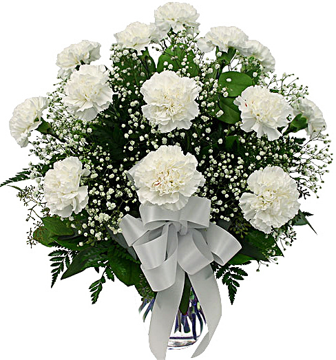 dozen-white-carnations[1]
