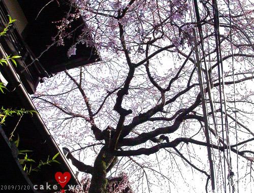 京都_70.jpg