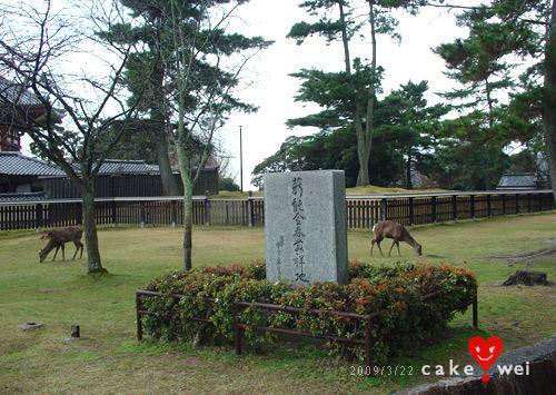 奈良_08.jpg