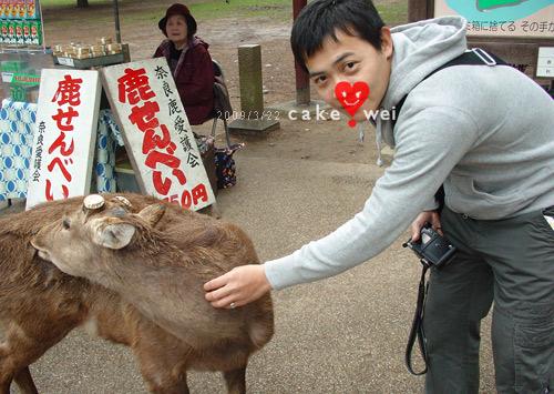 奈良_11.jpg