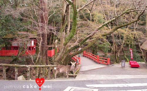 奈良_48.jpg
