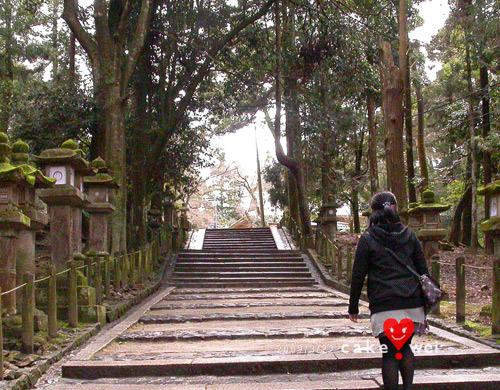 奈良_55.jpg