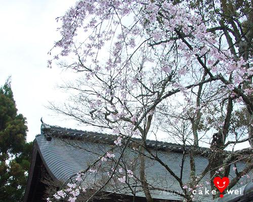 奈良_58.jpg