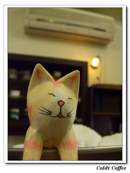 咖啡機上的貓2.JPG