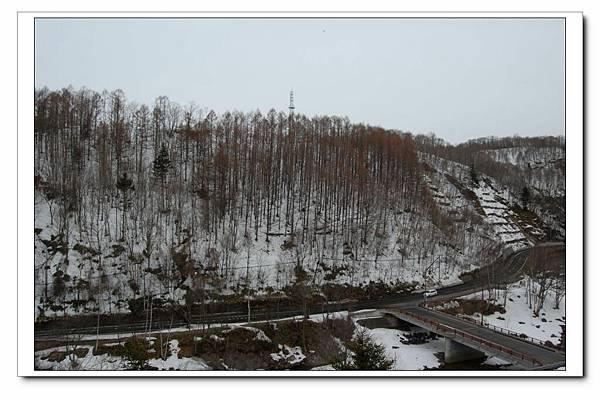 早晨的雪景.JPG
